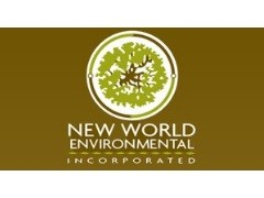 NEW WORLD ENVIRONMENTAL INC