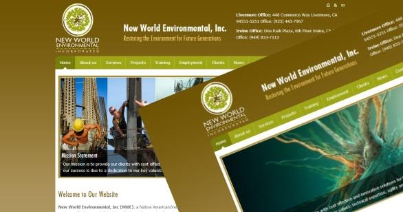 NEW WORLD ENVIRONMENTAL INC